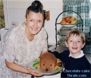 Hedgehog cake made by the Thompson family